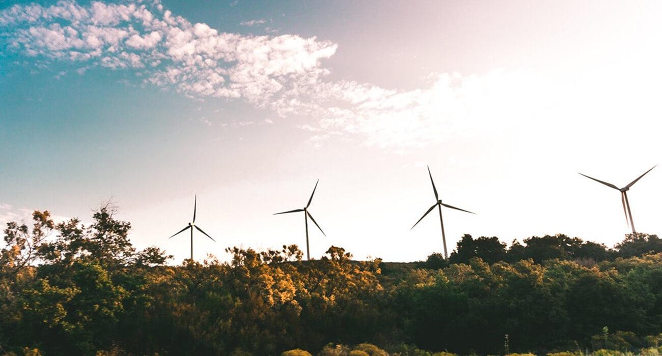 Energia Incentivada: Energia Eólica